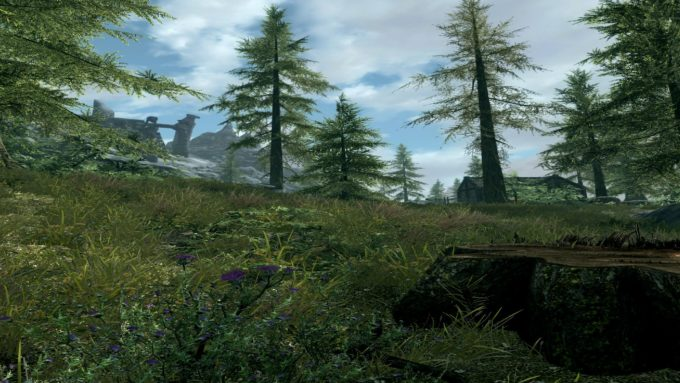 Skyrim VR版 バニラ版 (mod なし) での画面